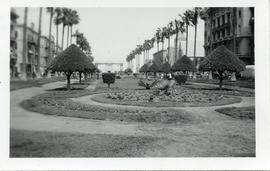 Photo: Park, Alexandria, March 1942